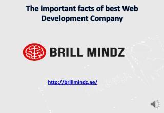Web development company Dubai (1).pdf
