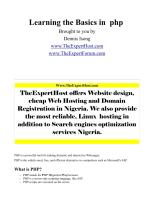 learning the basics in  php brought to you by dennis isong www.theexperthost.pdf